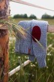 Το πουλόβερ είναι γκρίζο στον τομέα στοκ εικόνες