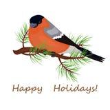 Το πουλί ένα bullfinch κάθεται στον κλάδο Κάρτα Χριστουγέννων, αφίσα ελεύθερη απεικόνιση δικαιώματος