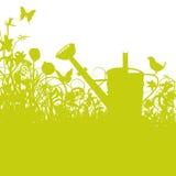 Το πουλί σε ένα πότισμα μπορεί στον κήπο Στοκ φωτογραφίες με δικαίωμα ελεύθερης χρήσης