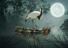 Το πουλί στο σεληνόφωτο Στοκ εικόνες με δικαίωμα ελεύθερης χρήσης
