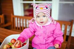 Το πολύ χαριτωμένο μωρό σε ένα ρόδινο σακάκι κρατά τα μήλα το φθινόπωρο στοκ εικόνες