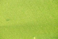 Το πράσινο γυαλί έσπασε Στοκ εικόνα με δικαίωμα ελεύθερης χρήσης