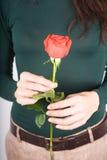 Το πράσινο πουλόβερ με το κόκκινο αυξήθηκε Στοκ φωτογραφίες με δικαίωμα ελεύθερης χρήσης