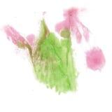 Το πράσινο ρόδινο watercolor μελανιού χρώματος παφλασμών χρωμάτων απομόνωσε τη βούρτσα κτυπήματος splatter watercolour aquarel Στοκ Φωτογραφία