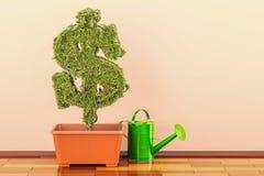 Το πράσινο σύμβολο δολαρίων flowerpot με το πότισμα μπορεί τρισδιάστατη απόδοση Στοκ Εικόνες