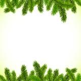 Το πράσινο χριστουγεννιάτικο δέντρο διακλαδίζεται διανυσματικό πλαίσιο Στοκ Εικόνες