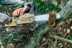 Το πριόνι που κόβει το ξύλο Στοκ Εικόνες
