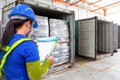 Το προσωπικό ελέγχει τα στοιχεία καταλόγων του προϊόντος στα εμπορευματοκιβώτια στοκ φωτογραφία με δικαίωμα ελεύθερης χρήσης