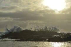 Το πρωί κολυμπά Στοκ φωτογραφία με δικαίωμα ελεύθερης χρήσης