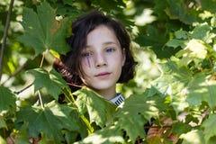 Το πρόσωπο ενός όμορφου κοριτσιού εφήβων μεταξύ της άδειας σφενδάμνου στοκ εικόνες