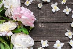 Το πρότυπο ευχετήριων καρτών γαμήλιας πρόσκλησης ή επετείου που διακοσμείται με τα ρόδινα και κρεμώδη peonies και jasmine ανθίζει Στοκ Φωτογραφία