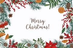 Το πρότυπο ευχετήριων καρτών με την εγγραφή και τα σύνορα Χαρούμενα Χριστούγεννας φιαγμένες από κωνοφόρο διακλαδίζεται, μούρα, γλ απεικόνιση αποθεμάτων