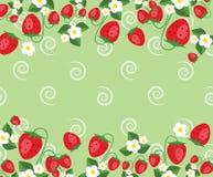 Το πρότυπο πλαισίων με τις φράουλες, βγάζει φύλλα και ανθίζει Διανυσματική ανασκόπηση Στοκ Εικόνες