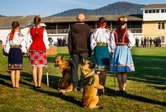 Το πρώτο πρωτάθλημα της εθνικής αστυνομίας της Ουκρανίας με τους ολόγυρους χειριστές σκυλιών Στοκ Εικόνες