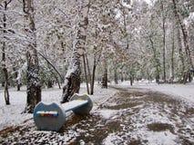 Το πρώτο χιόνι ενέπεσε στο πάρκο Στοκ Εικόνες