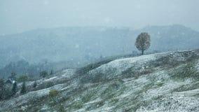 Το πρώτο χιόνι στα Καρπάθια βουνά Στοκ Εικόνες
