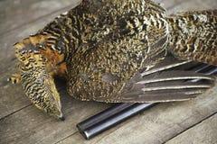 Το πυροβόλο όπλο σκότωσε τους κυνηγούς πουλιών, θήραμα, αγριόκουρκος Στοκ εικόνες με δικαίωμα ελεύθερης χρήσης