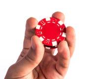 Το πόκερ πελεκά υπό εξέταση Στοκ Φωτογραφίες