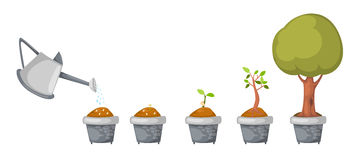 Το πότισμα μπορεί με το διάνυσμα κύκλων ζωής δέντρων Στοκ Εικόνες