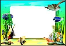 Το πλαίσιο με τα ψάρια και τη χελώνα (Διάνυσμα) Στοκ φωτογραφία με δικαίωμα ελεύθερης χρήσης