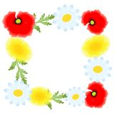Το πλαίσιο λουλουδιών Στοκ Εικόνες