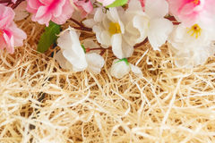 Το πλαίσιο των λουλουδιών άνοιξη στα ξύλινα ξέσματα, με το διάστημα για το κείμενο, αναπηδά το θέμα Στοκ φωτογραφίες με δικαίωμα ελεύθερης χρήσης