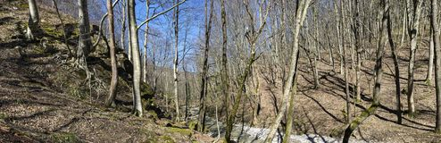 Το ρεύμα βουνών Στοκ φωτογραφία με δικαίωμα ελεύθερης χρήσης
