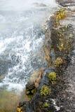 Το ρεύμα και η ακτή Στοκ εικόνα με δικαίωμα ελεύθερης χρήσης