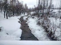 Το ρεύμα με τη χιονώδη ακτή Στοκ Εικόνα