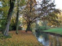 Το ρεύμα Panke στο Βερολίνο το φθινόπωρο Στοκ Φωτογραφίες