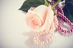 το ροζ μαργαριταριών χαντ&rh Στοκ φωτογραφία με δικαίωμα ελεύθερης χρήσης
