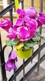 Το ροζ τα λουλούδια στα σκαλοπάτια κιγκλιδωμάτων στοκ φωτογραφία