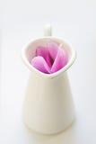Το ροζ τα λουλούδια στην άσπρη κανάτα Στοκ Φωτογραφίες