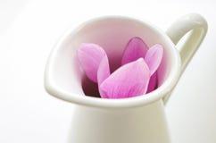 Το ροζ τα λουλούδια στην άσπρη κανάτα Στοκ εικόνες με δικαίωμα ελεύθερης χρήσης
