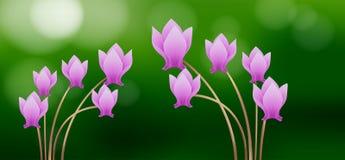 Το ροζ τα λουλούδια στο πράσινο υπόβαθρο Στοκ φωτογραφία με δικαίωμα ελεύθερης χρήσης