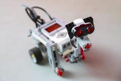 Το ρομπότ παιχνιδιών από το πλαστικό εμποδίζει το σκυλί Στοκ φωτογραφία με δικαίωμα ελεύθερης χρήσης