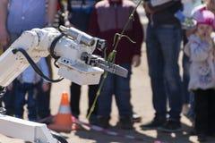 Το ρομπότ φέρνει ένα γαρίφαλο στο χέρι Στοκ εικόνες με δικαίωμα ελεύθερης χρήσης