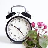 Το ρολόι με τα λουλούδια ενός Apple-δέντρου του niedzwetzkyana Dieck Nedzvetsky Malus στο άσπρο υπόβαθρο Στοκ εικόνες με δικαίωμα ελεύθερης χρήσης