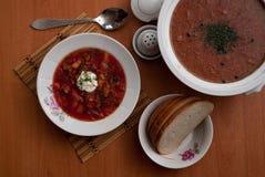 Το ρωσικό εθνικό πιάτο είναι κόκκινο borsch Στοκ Εικόνες