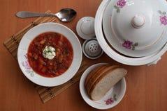 Το ρωσικό εθνικό πιάτο είναι κόκκινο borsch Στοκ Φωτογραφία