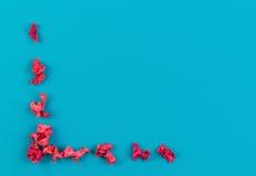 Το ρόδινο ξηρό λουλούδι φυτεύει το πλαίσιο συνόρων στο μπλε υπόβαθρο Η τοπ άποψη, επίπεδη βάζει Στοκ Εικόνες