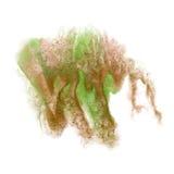 Το ρόδινο πράσινο καφετί απομονωμένο κτύπημα watercolor μελανιού χρώματος παφλασμών χρωμάτων splatter watercolour aquarel βουρτσί Στοκ Εικόνες
