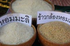 Το ρύζι είναι ένα σιτάρι που το world& x27 ο πληθυσμός του s καταναλώνει ως σημαντικά τρόφιμα Ειδικά στην Ασία στοκ φωτογραφία με δικαίωμα ελεύθερης χρήσης