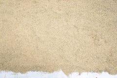 Το ρύζι ορυζώνα, ρύζι ορυζώνα δεν έχει το κοχύλι έξω Στοκ Φωτογραφίες