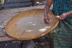 Το ρύζι Ταϊλανδός για τρώει όλο το πρόσωπο Στοκ Φωτογραφία