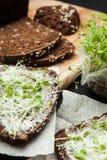 Το σάντουιτς βιταμινών για το cheerfulness και η ευημερία του μαύρου σιταριού πασπαλίζουν με ψίχουλα και των πρασίνων μικροϋπολογ στοκ φωτογραφίες με δικαίωμα ελεύθερης χρήσης