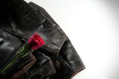 Το σακάκι δέρματος και κόκκινος αυξήθηκε Στοκ εικόνα με δικαίωμα ελεύθερης χρήσης