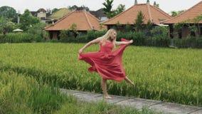 Το σε αργή κίνηση όμορφο νέο κορίτσι πυροβολισμού χορεύει εύκολα στον τομέα ρυζιού μόνο, uninhibitedly να κινηθεί, κάνοντας το σπ απόθεμα βίντεο