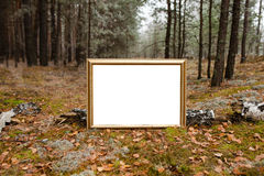 Το σημάδι στο δάσος Στοκ εικόνες με δικαίωμα ελεύθερης χρήσης