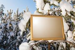 Το σημάδι στο δασικό υπόβαθρο Στοκ φωτογραφία με δικαίωμα ελεύθερης χρήσης